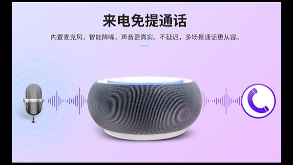 智能音箱是什么?_智能音箱与普通音箱有什么区别_轻生活科技